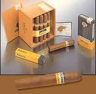 Cohiba cigars online. Robustos Pack Of 3